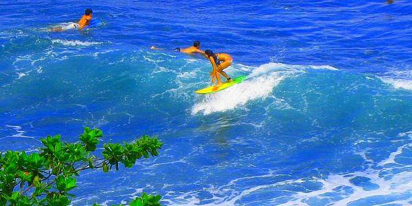 Surfing Tao